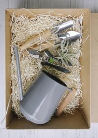 Миниатюрная лейка для комнатных цветов 0,7 л. Burgon Ball Garden Suppliers фото фото