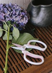 Японские ножницы для цветов Chikamasa в подарок флористу от Consta Garden фото