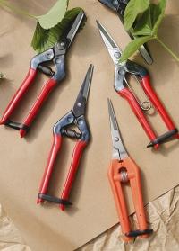 Японские садовые ножницы для цветов, фруктов и овощей T-55C Chikamasa фото