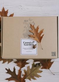 Подарочный набор для садовода и дачника в подарочной упаковке от Consta Garden фото