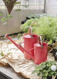 Лейка садовая металлическая для цветов 4.5 л. Coral Pink Smart Garden фото
