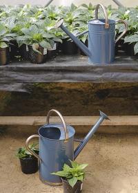 Английская металлическая лейка для цветов 4.5 л. Blue Smart Garden картинка