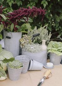 Оцинкованный садовый инвентарь в стиле под старину OZ49 Esschert Design фото