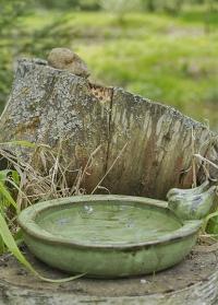 Кормушка-купальня для птиц керамическая для ландшафтного дизайна Green FB489 Esschert Design фото