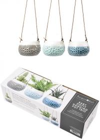 Маленькие подвесные керамические кашпо для суккулентов и кактусов Baby Dotty Trio от Burgon Ball фото