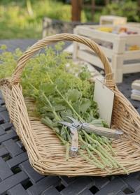 Корзина плетеная для сбора цветов и трав FH001 голландского бренда Esschert Design фото