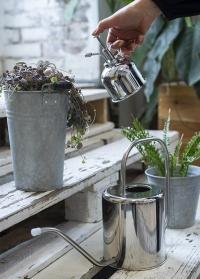 Пульверизатор для растений из нержавейки Silver TG270 Esschert Design фото