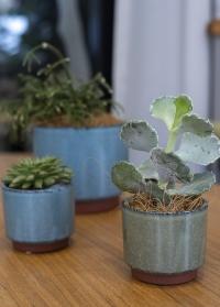 Керамическое кашпо для суккулентов и кактусов Malibu Green Burgon & Ball фото