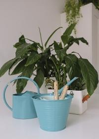 Подарок цветоводу - набор кашпо и лейка для комнатных растений Burgon & Ball от Consta Garden фото