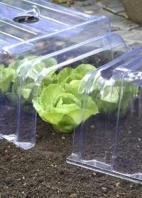Пластиковый прямоугольный колпак-туннель для укрытия овощных грядок Clear Cloche Smart Garden фото