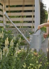 Садовая оцинкованная лейка для цветов с длинным носиком OZ77 Esschert Design фото