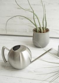 Дизайнерская металлическая лейка шар из нержавейки для полива комнатных растений TG295 Esschert Design фото