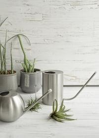 Дизайнерская металлическая лейка из нержавеющей стали для комнатных растений TG296 Esschert Design фото