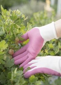 Оригинальный подарок для садовода и дачника «Всегда под рукой» от Consta Garden фото