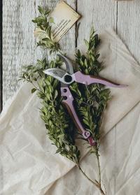Подарок GardenGirl Classic «Всегда под рукой»