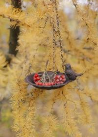 Декоративная подвесная кормушка для птиц из чугуна Esschert Design FB378 фото