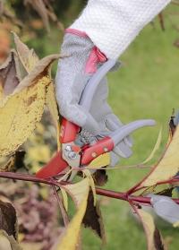 Перчатки садовые женские для ухода за садом Grey Tweed Love the Glove Burgon & Ball картинка