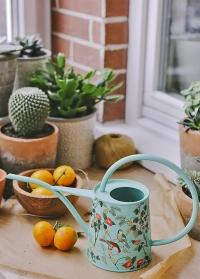 Стильная лейка для полива комнатных растений 1 л. Flora and Fauna от Burgon & Ball фото