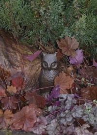 Садовая фигурка Сова TT124 Esschert Design для сада, огорода, дачи фото