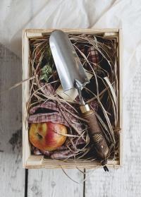 Подарочный ящичек из дерева Consta Garden фото