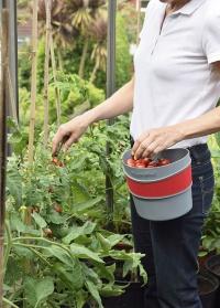 Контейнер на поясе для сбора урожая и сорняков Burgon & Ball, L